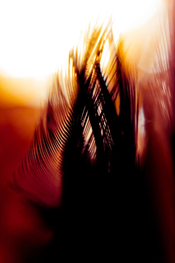 abstractart2-01072013