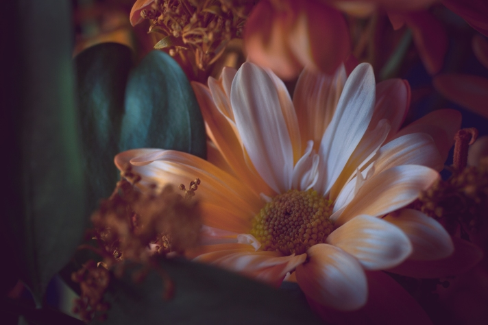 FloralFriday-11292013
